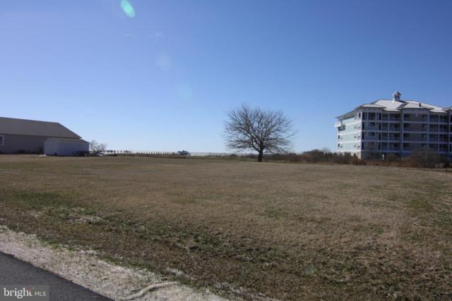 1 Hammock Pointe Road, CRISFIELD, MD 21817 (#MDSO101804) :: The Windrow Group