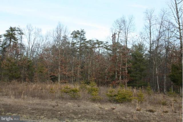 Lot 15 Springwood Lane, STEPHENS CITY, VA 22655 (#VAWR133836) :: Peter Knapp Realty Group