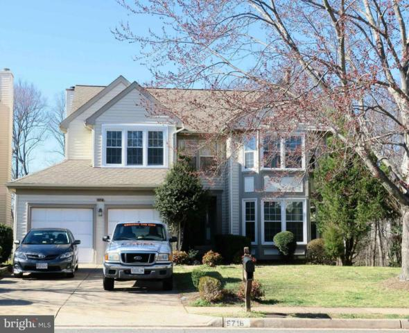 5716 Deer Pond Road, CENTREVILLE, VA 20120 (#VAFX996472) :: Colgan Real Estate