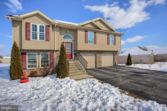 47 Sir William Drive, NEWVILLE, PA 17241 (#PACB109790) :: The Heather Neidlinger Team With Berkshire Hathaway HomeServices Homesale Realty