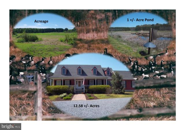 27542 Chloras Point Road, TRAPPE, MD 21673 (#MDTA132880) :: Keller Williams Pat Hiban Real Estate Group