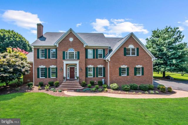 13317 Long Leaf Drive, CLARKSVILLE, MD 21029 (#MDHW250500) :: Great Falls Great Homes