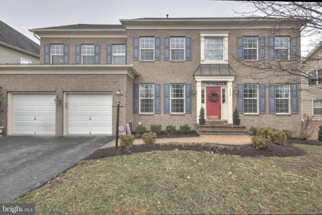 43820 Riverpoint Drive, LEESBURG, VA 20176 (#VALO354864) :: Remax Preferred | Scott Kompa Group