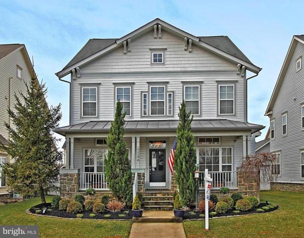 23346 Higbee Lane, ASHBURN, VA 20148 (#VALO354954) :: Colgan Real Estate
