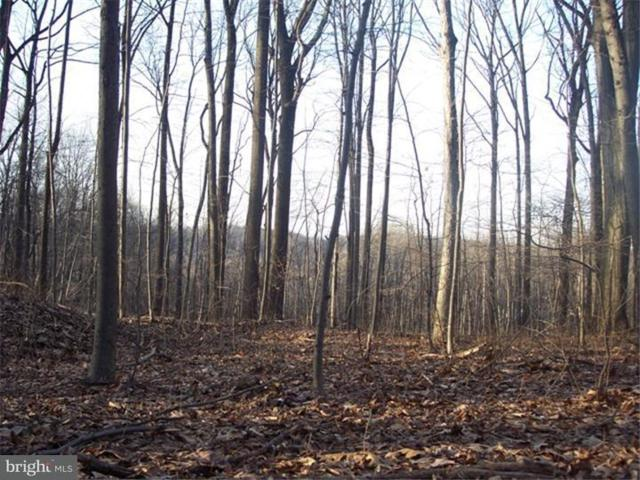 6610 S Barbara Drive Lot 23, ALBURTIS, PA 18011 (#PABK325932) :: Colgan Real Estate