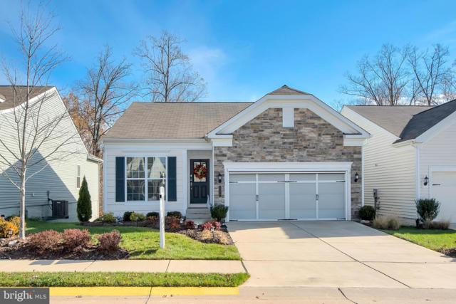129 Denison Street, FREDERICKSBURG, VA 22406 (#VAST201430) :: Great Falls Great Homes