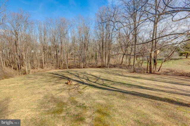 10101 Captain Hickory Place, GREAT FALLS, VA 22066 (#VAFX998714) :: Colgan Real Estate