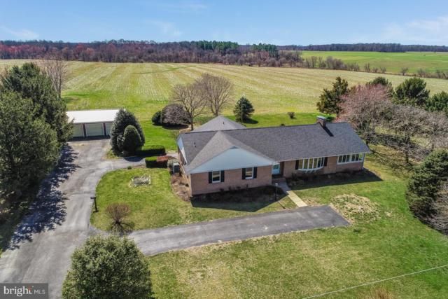 29045 Morgnec Road, KENNEDYVILLE, MD 21645 (#MDKE114026) :: Circadian Realty Group