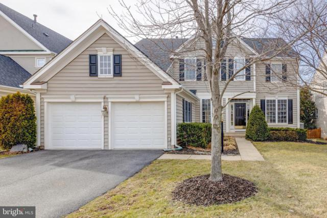 24769 Stone Pillar Drive, ALDIE, VA 20105 (#VALO355076) :: Remax Preferred | Scott Kompa Group