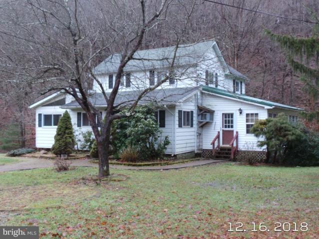13501 Bowmans Lane NW, MOUNT SAVAGE, MD 21545 (#MDAL130128) :: Colgan Real Estate