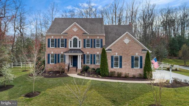 501 Broad Stream Lane, DAVIDSONVILLE, MD 21035 (#MDAA376716) :: Colgan Real Estate