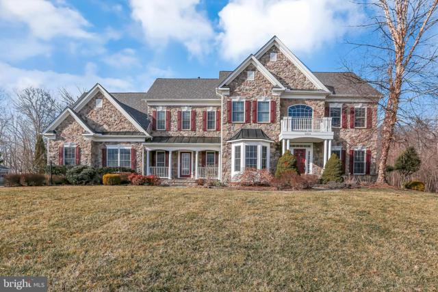 42804 Appaloosa Trail Court, CHANTILLY, VA 20152 (#VALO355182) :: Remax Preferred | Scott Kompa Group