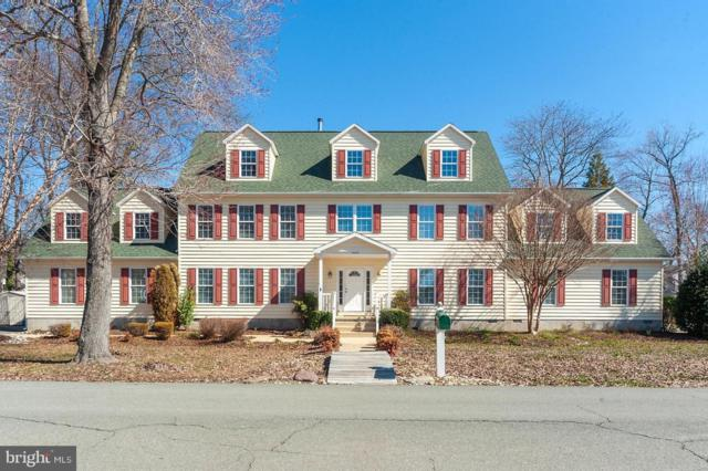 3874 Holly Drive, EDGEWATER, MD 21037 (#MDAA376758) :: Eng Garcia Grant & Co.