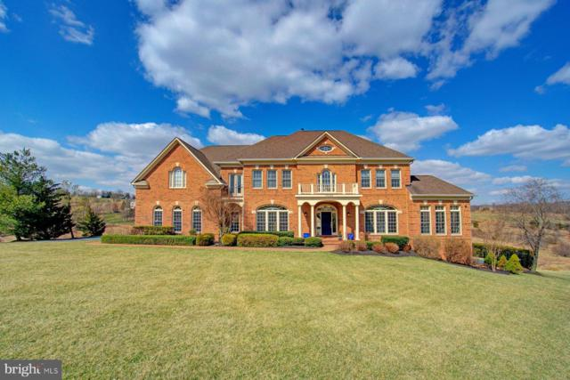 17285 Count Turf Place, LEESBURG, VA 20176 (#VALO355204) :: Blue Key Real Estate Sales Team