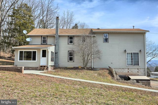 1584 Mountain House Road, HALIFAX, PA 17032 (#PADA107458) :: Keller Williams of Central PA East