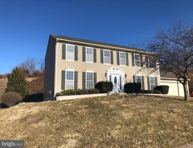 117 Ivy Hill Drive, MIDDLETOWN, MD 21769 (#MDFR233894) :: RE/MAX Plus