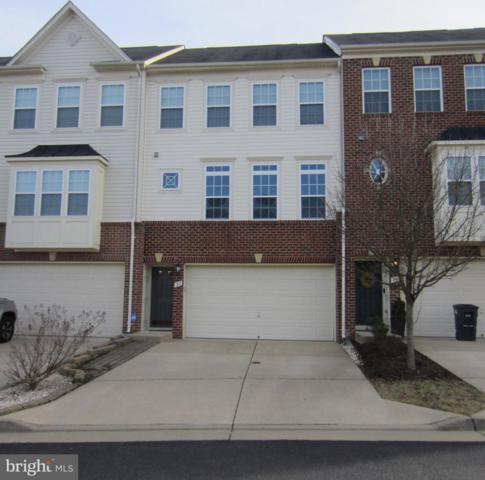 30 Hunting Creek Lane, STAFFORD, VA 22556 (#VAST201560) :: Browning Homes Group