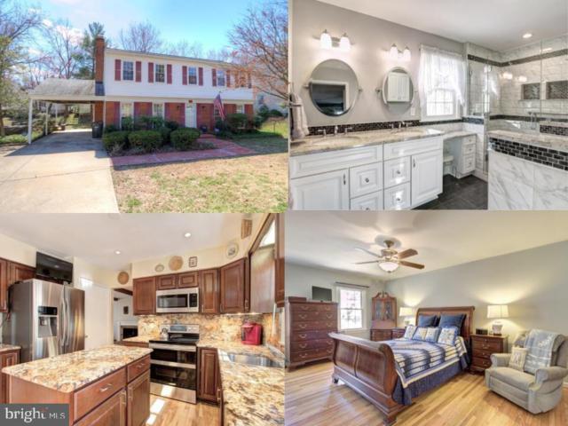 8801 Arley Drive, SPRINGFIELD, VA 22153 (#VAFX999578) :: TVRG Homes