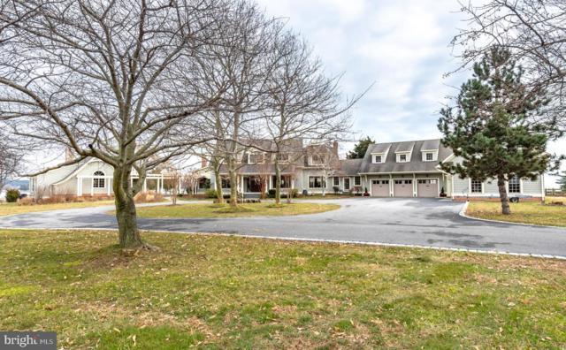 200 Neptune Drive, STEVENSVILLE, MD 21666 (#MDQA137076) :: The Riffle Group of Keller Williams Select Realtors