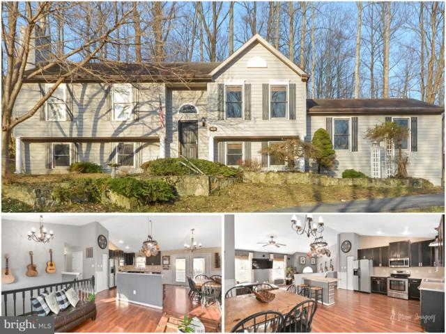6745 Hemlock Point Road, NEW MARKET, MD 21774 (#MDFR233986) :: Jim Bass Group of Real Estate Teams, LLC