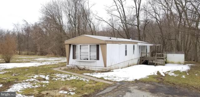1175 Klines Run Road, WRIGHTSVILLE, PA 17368 (#PAYK111558) :: Colgan Real Estate