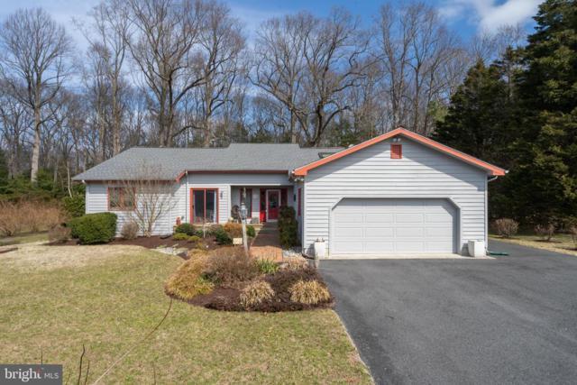 32275 Sandpiper Drive, MILLSBORO, DE 19966 (#DESU133938) :: Colgan Real Estate
