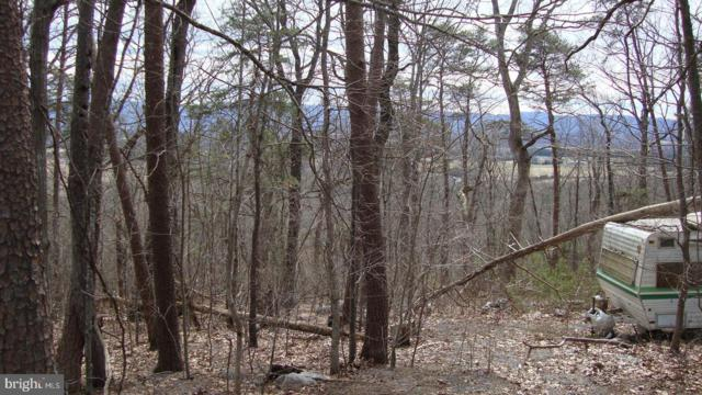 Long View Drive, LURAY, VA 22835 (#VAPA103860) :: Eng Garcia Grant & Co.