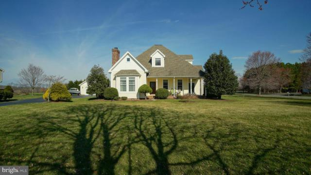 12026 Parson Hill Court, WORTON, MD 21678 (#MDKE114048) :: Circadian Realty Group