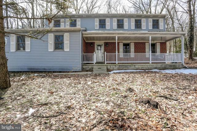 39 Chain Saw Road, DILLSBURG, PA 17019 (#PAYK111650) :: Teampete Realty Services, Inc