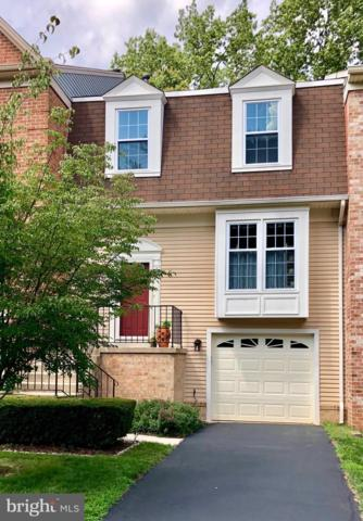 7835 Painted Daisy Drive, SPRINGFIELD, VA 22152 (#VAFX1000038) :: The Putnam Group