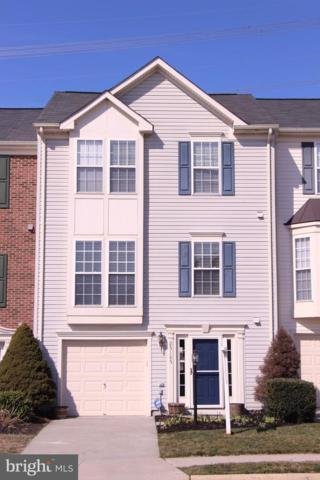 25185 Creation Terrace, ALDIE, VA 20105 (#VALO355540) :: Browning Homes Group