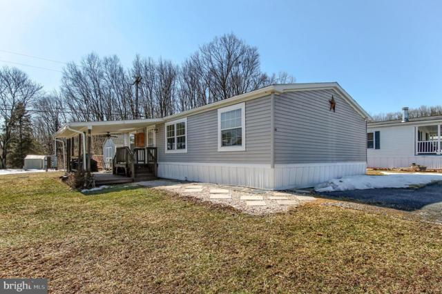 119 Drew Avenue, NEW BLOOMFIELD, PA 17068 (#PAPY100506) :: Remax Preferred | Scott Kompa Group