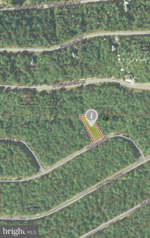 58 Dogwood Drive, HAZLE TOWNSHIP, PA 18201 (#PALU102898) :: Remax Preferred | Scott Kompa Group