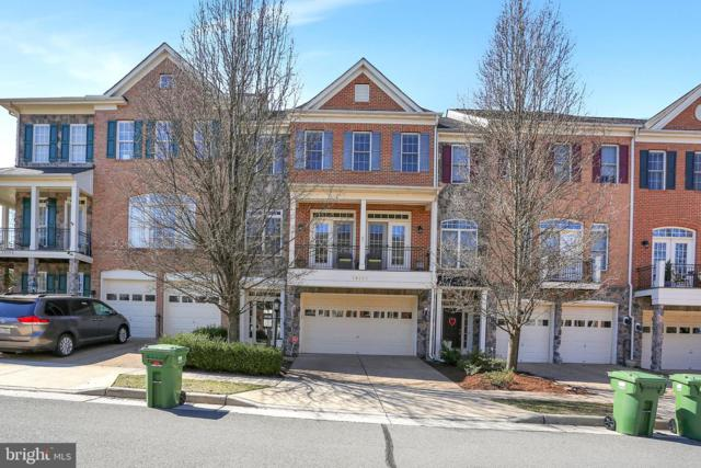 19101 Icehouse Terrace, LEESBURG, VA 20176 (#VALO355580) :: LaRock Realtor Group