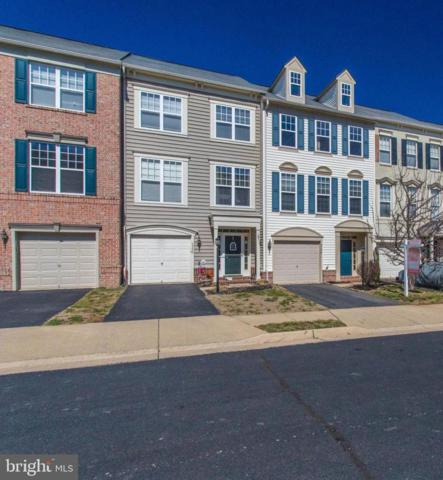43228 Highgrove Terrace, BROADLANDS, VA 20148 (#VALO355618) :: LaRock Realtor Group