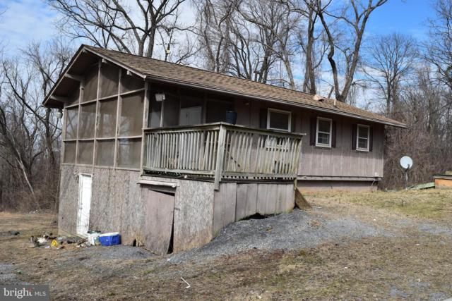 3017 Blue Mountain Road, FRONT ROYAL, VA 22630 (#VAWR134012) :: AJ Team Realty