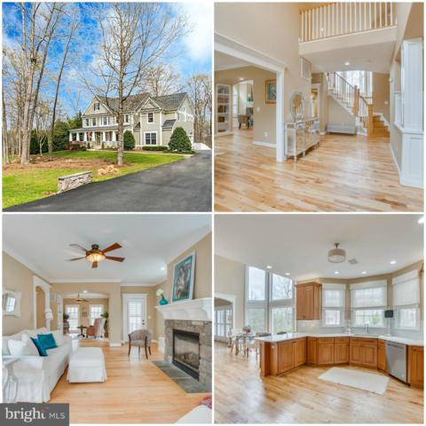 11303 Nestling Ridge, SPOTSYLVANIA, VA 22551 (#VASP204052) :: Blue Key Real Estate Sales Team
