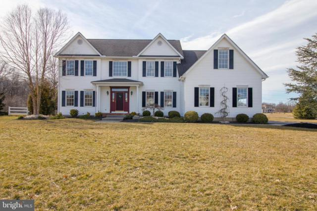 401 Skyview Drive, MIDDLETOWN, DE 19709 (#DENC417922) :: RE/MAX Coast and Country
