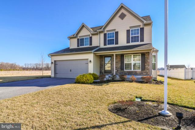 102 River Run Boulevard, FELTON, DE 19943 (#DEKT220666) :: Colgan Real Estate