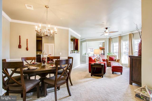 1622 Hardwick Court #304, HANOVER, MD 21076 (#MDAA377484) :: The Putnam Group