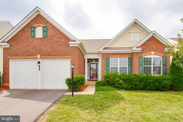 1484 Casual Water Way, LOCUST GROVE, VA 22508 (#VAOR131332) :: RE/MAX Cornerstone Realty