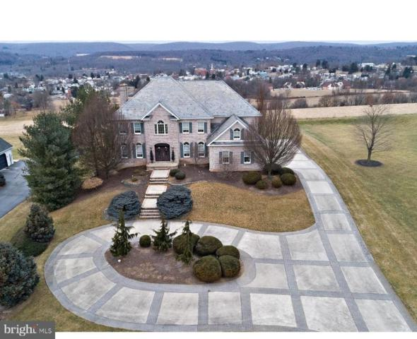 3010 Ridgeview Drive, ORWIGSBURG, PA 17961 (#PASK124384) :: The Heather Neidlinger Team With Berkshire Hathaway HomeServices Homesale Realty