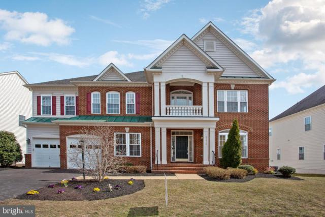 41816 Cordgrass Circle, ALDIE, VA 20105 (#VALO355718) :: LaRock Realtor Group