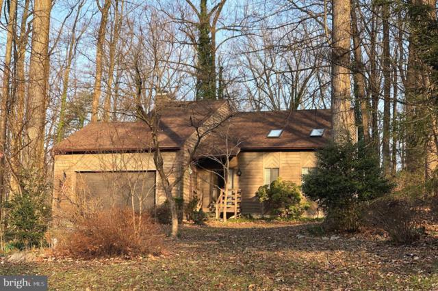 1134 Valentine Creek Drive, CROWNSVILLE, MD 21032 (#MDAA377606) :: Colgan Real Estate