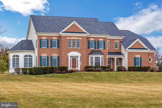 6902 Southridge Place, MIDDLETOWN, MD 21769 (#MDFR234264) :: Great Falls Great Homes