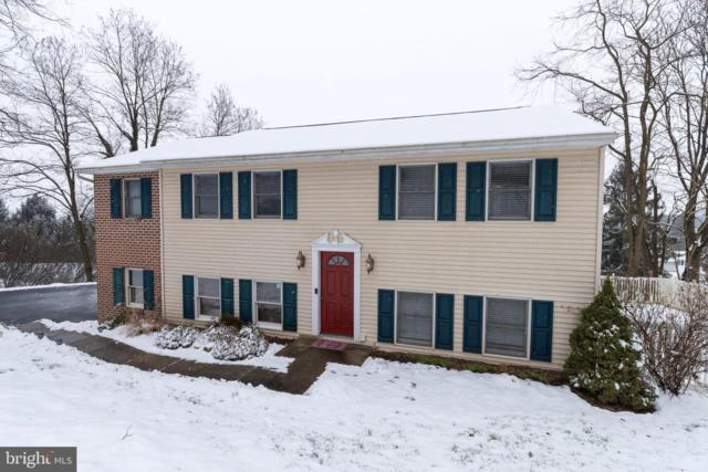 4117 Forrest Road, MOUNT JOY, PA 17552 (#PALA124220) :: The Heather Neidlinger Team With Berkshire Hathaway HomeServices Homesale Realty