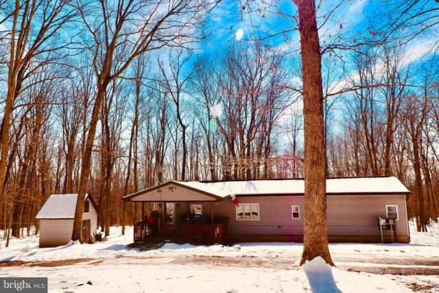 369 Buck Mountain Road, ZION GROVE, PA 17985 (#PASK124404) :: The Heather Neidlinger Team With Berkshire Hathaway HomeServices Homesale Realty