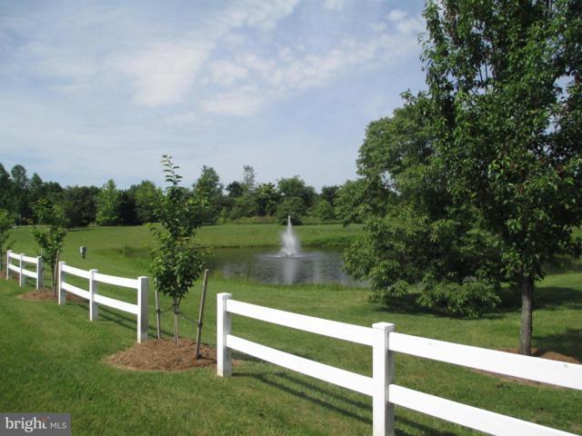 Beauregard Way, MINERAL, VA 23117 (#VALA117680) :: Eng Garcia Grant & Co.