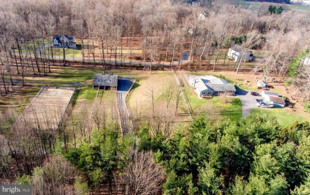 12620 Emory Farm Lane, SYKESVILLE, MD 21784 (#MDHW251220) :: Charis Realty Group