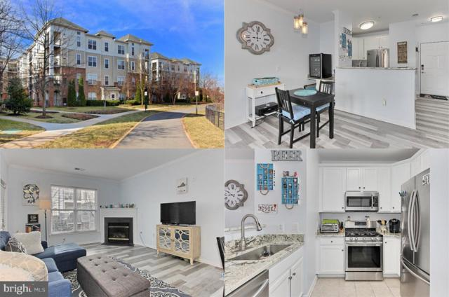 3820 Lightfoot Street #216, CHANTILLY, VA 20151 (#VAFX1001182) :: Stello Homes